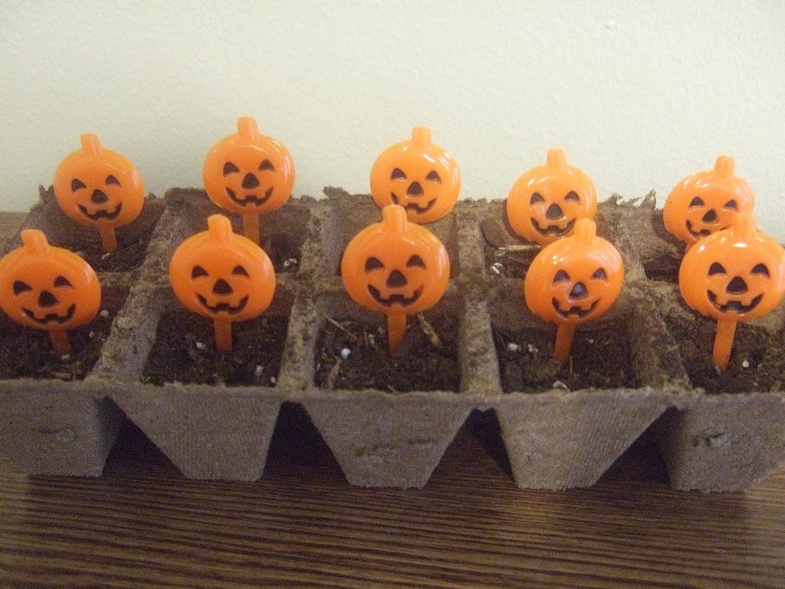 First Grade School Box Ten Little Pumpkins Subtraction Center