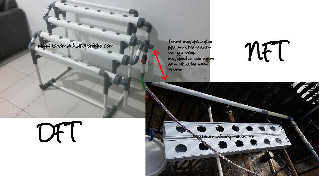 Cara Mudah Menggabungkan Sistem Hidroponik Dft Dan Nft Dengan Modal 300 Ribu Bercocok Tanam Hidroponik Yang Mudah Murah Dan Pasti Berhasil