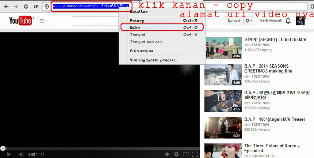 Rianti Anugrah: Cara Mendownload Video di Youtube tanpa