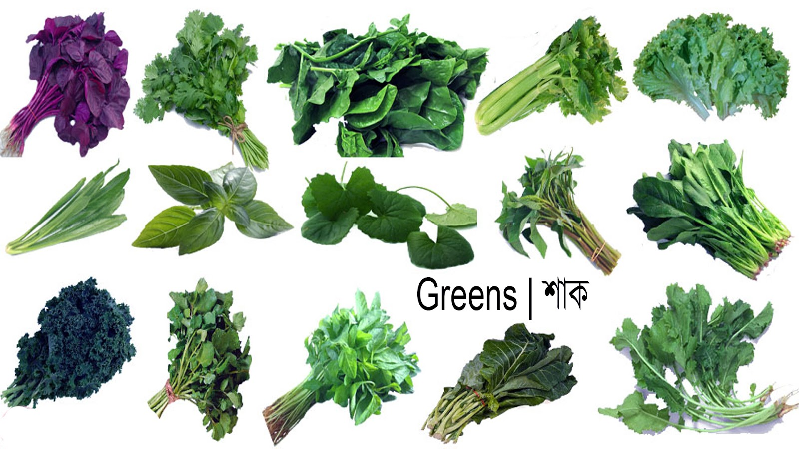 Greens or Leafy Greens Names, Meaning & Image | Necessary Vocabulary