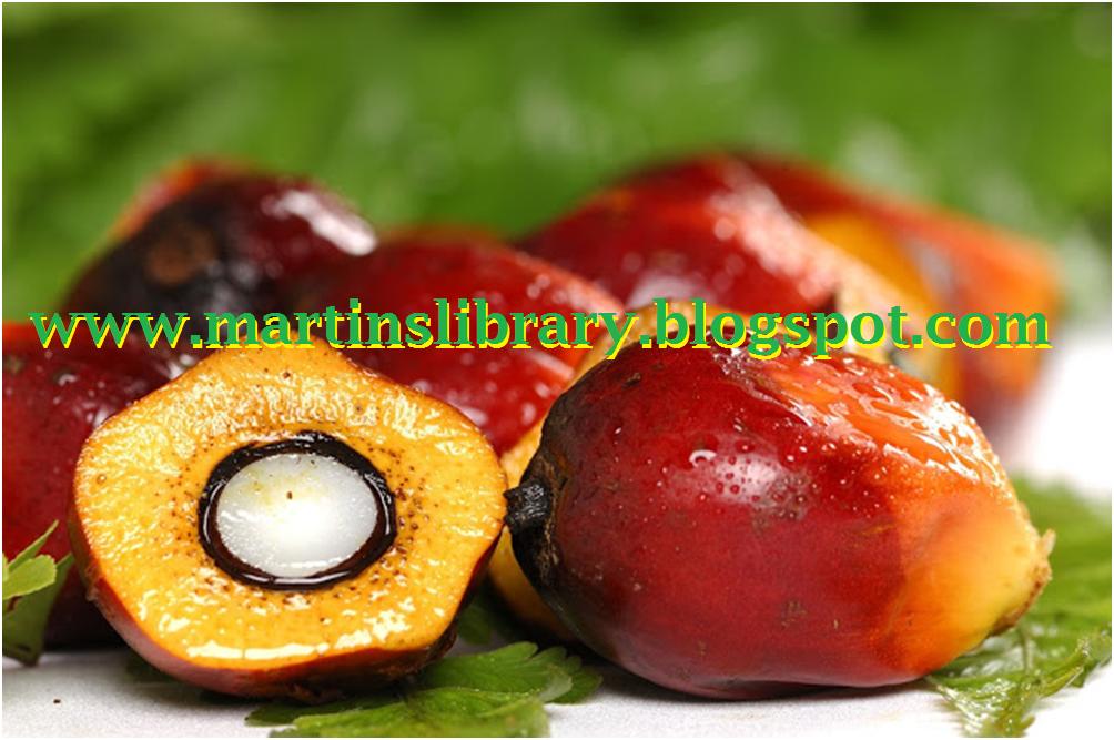 Palm kernel oil business plan