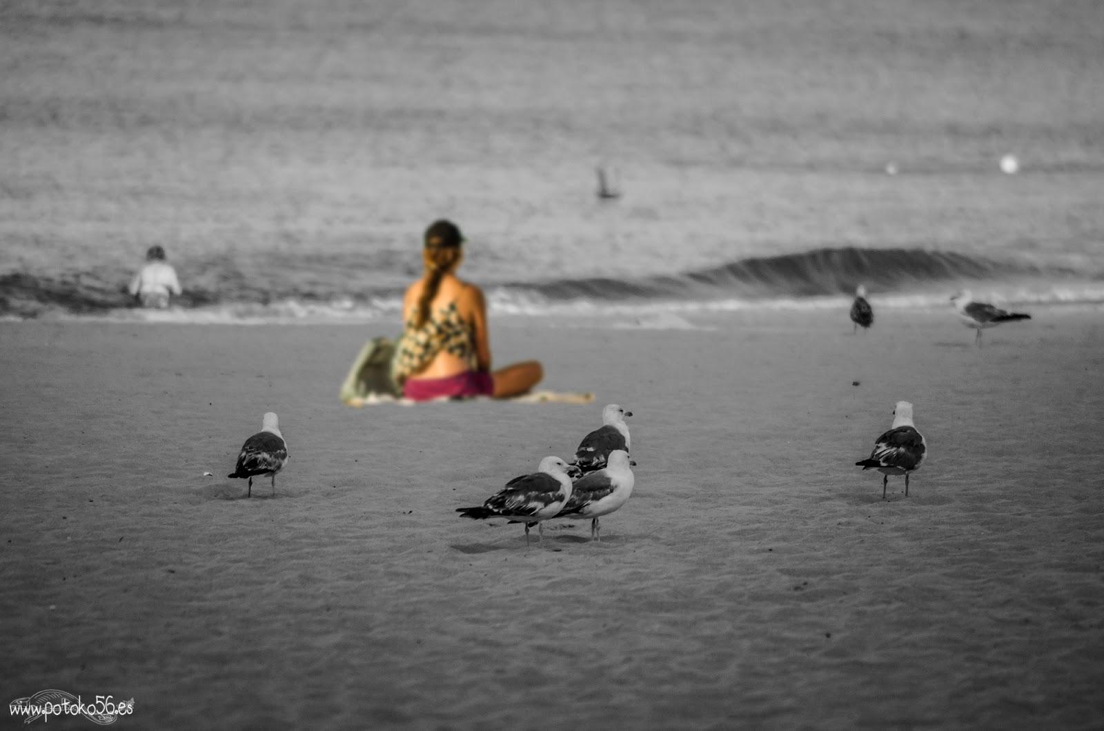 Playa de la Costilla chica con su Karma Rota