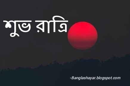 Good Night Bangla Image Free Download ~ Bangla Shayari