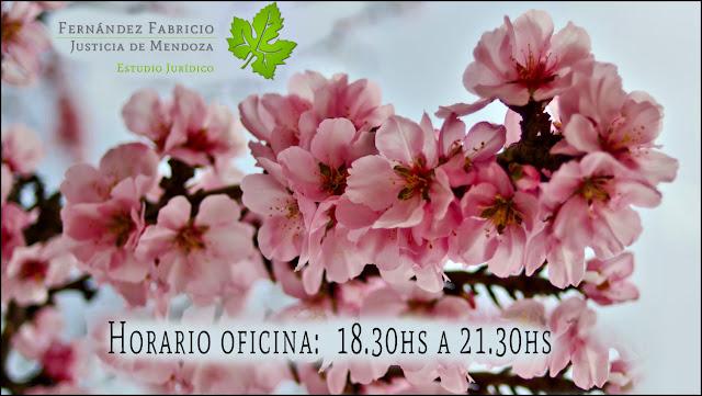 Horarios de atención oficina Dr. Fabricio Fernandez abogado de Mendoza