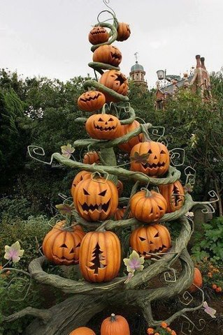 Cute and Funny Pictures and more: Halloween jack-o-lantern