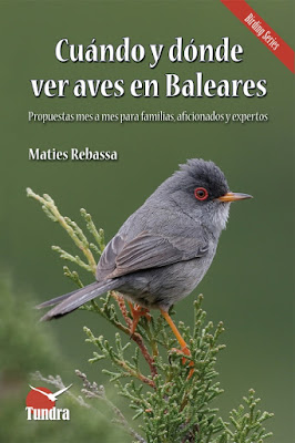 Cuándo y dónde ver aves en Baleares