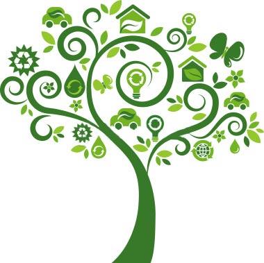 Importância da Ecologia Para a Sociedade