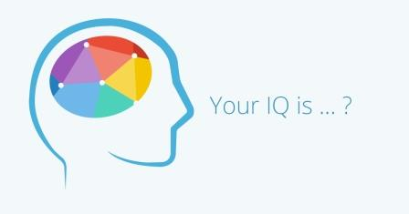 IQ (Intelligence Quotient)