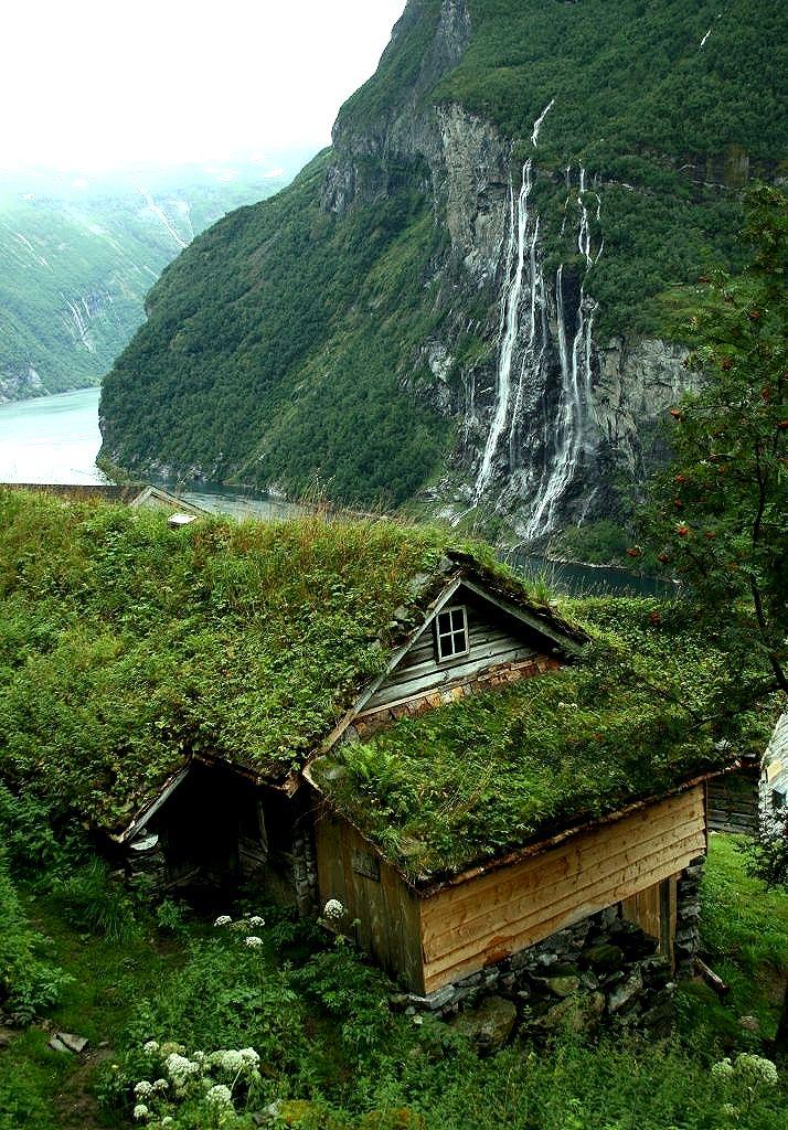 toit végétalisé dans la montagne