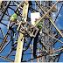 Telefonia e banda larga móvel se mantiveram em funcionamento em Brumadinho (MG)