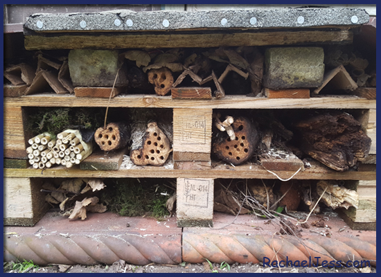the whole family got involved in building our Bug Hotel