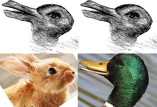 Pato ou Coelho - Imagem ambígua