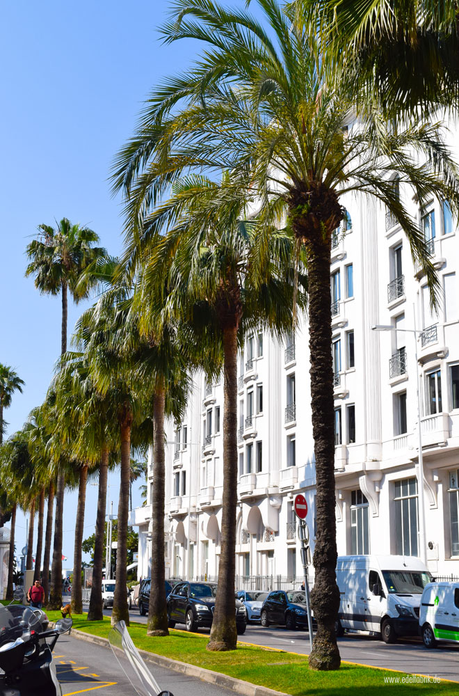 Mit Elvital Öl Magique in Cannes
