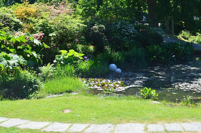 Hagen på Sofiero. Foto 1
