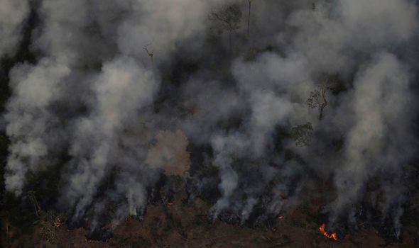 The Amazon Rainforest Has Been Devastated By Fire For Weeks, And The World Hardly Knows