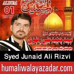 http://www.humaliwalayazadar.com/2017/10/syed-junaid-ali-rizvi-nohay-2018.html