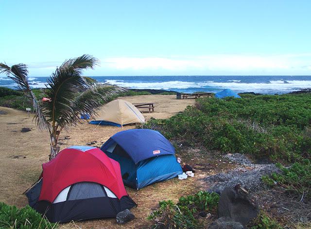 Whittington Beach Park Camping