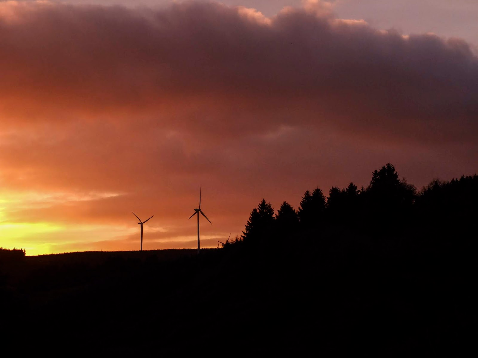 Windmills and a forest with sunset clouds in the Boggeragh Mountains.