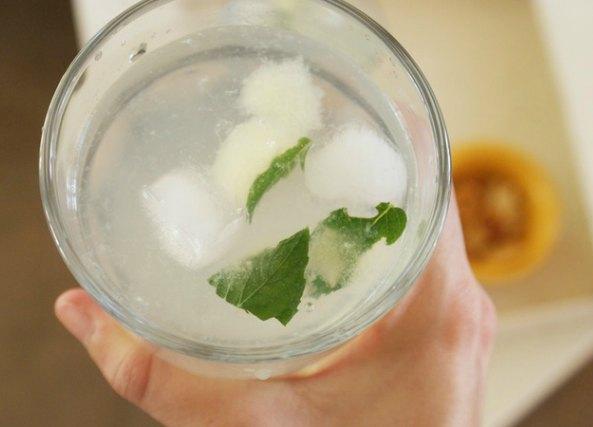 Bebida menta y limon en cubitos de hielo