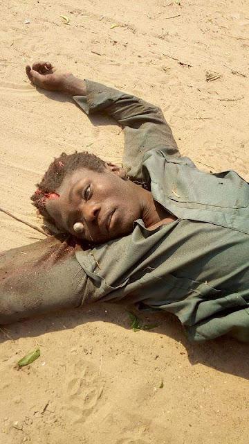Photos: Boko Haram terrorists meet their waterloo in the hands of Civilian JTF in Borno
