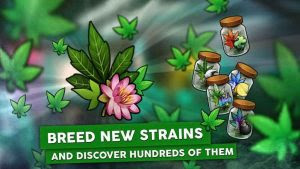 Hempire Weed Growing Game Apk