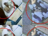 Penampakan Foto Para Jemaah Haji Muncul Di Lantai Rumah Dan Bikin Heboh Warga