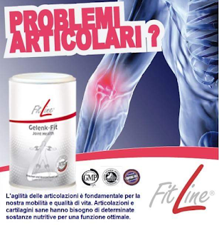 Fitline Artifit Gelenk-fit