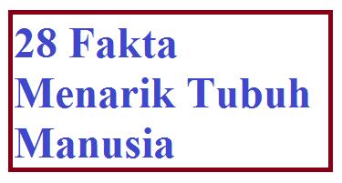 www.avkimia.com