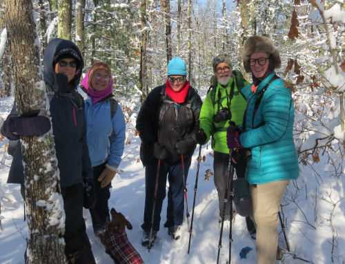 hikers on snowy trail