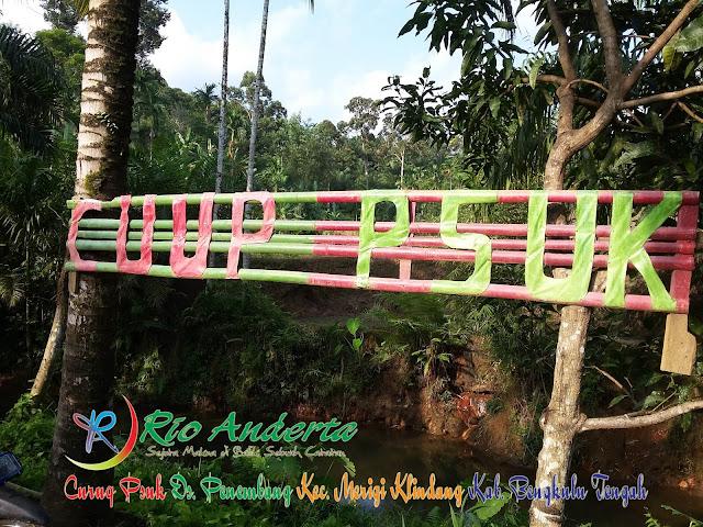 5 Pesona Penembang Wisata Alam Air Terjun Bengkulu Tengah