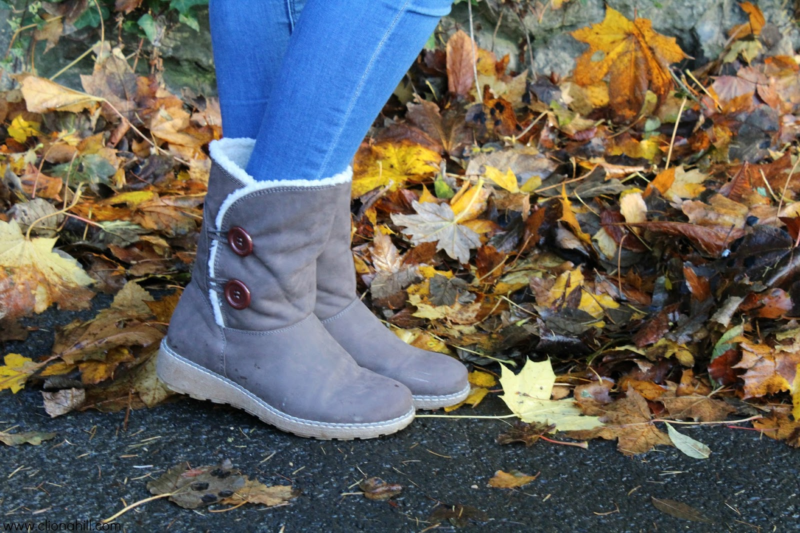 Autumn/Winter boots