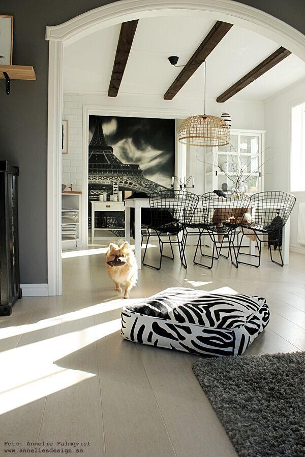 fototapet, mr perswall pomeranian, zebra, zebrakudde, hundbädd, hundsäng, kudde, kuddar, valv, takbalkar, takbjälkar, bjälkar, matgrupp, utemöbler, jotex, webbutik, webbutiker, webshop, inredning, inredningsblogg, blogg, bloggar, annelies design, poster, svart och vitt, svartvitt, svartvit, svartvita,