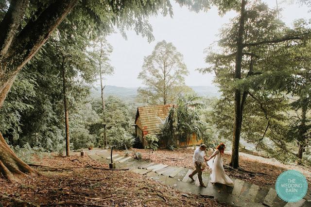 serene forest house