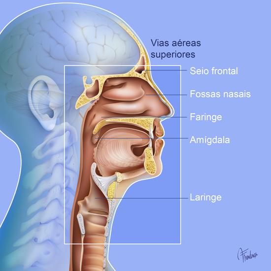 CUIDADO CRITICO 1: Sistema Cardio respiratorio