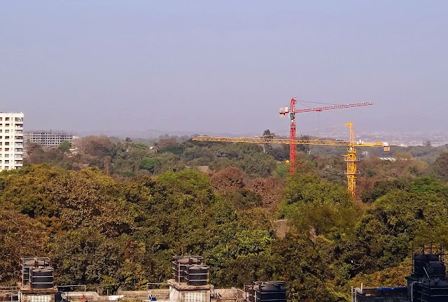 construction in green belt