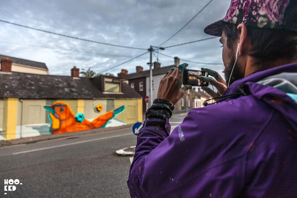 Street Art Mural In Ireland by Canadian street artist Birdo. Photo ©Hookedblog