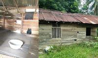 Diungkap Warga, Ibu Kartini Tinggal Di Gubuk Tua