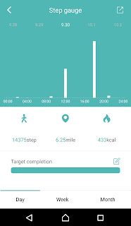 FourFit Health Band Review on Us Two Plus You - Graph of steps over a day