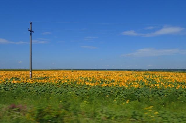 Krajobrazy Niziny Węgierskiej