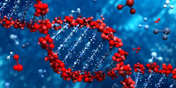 Curso de Verão: Tópicos em Engenharia Genética