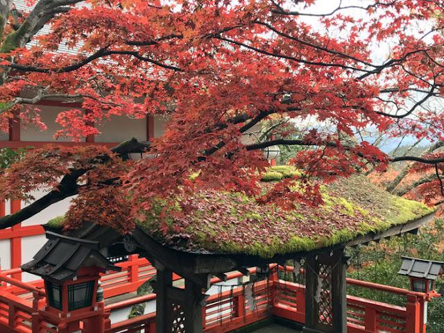 鞍馬寺から貴船神社