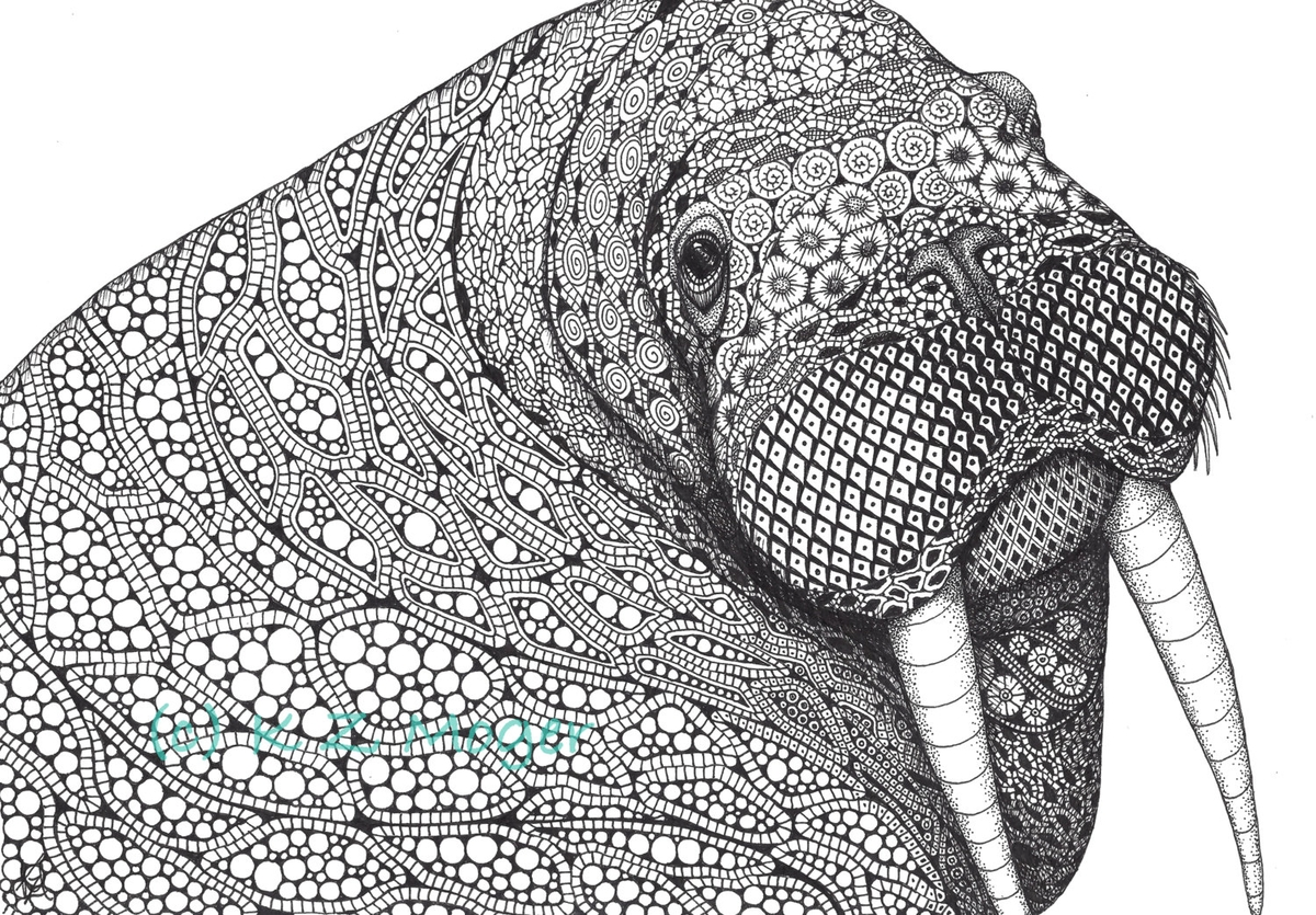 06-Curious-Walrus-Kristin-Moger-Domestic-and-Wild-Zentangle-Animal-Portraits-www-designstack-co
