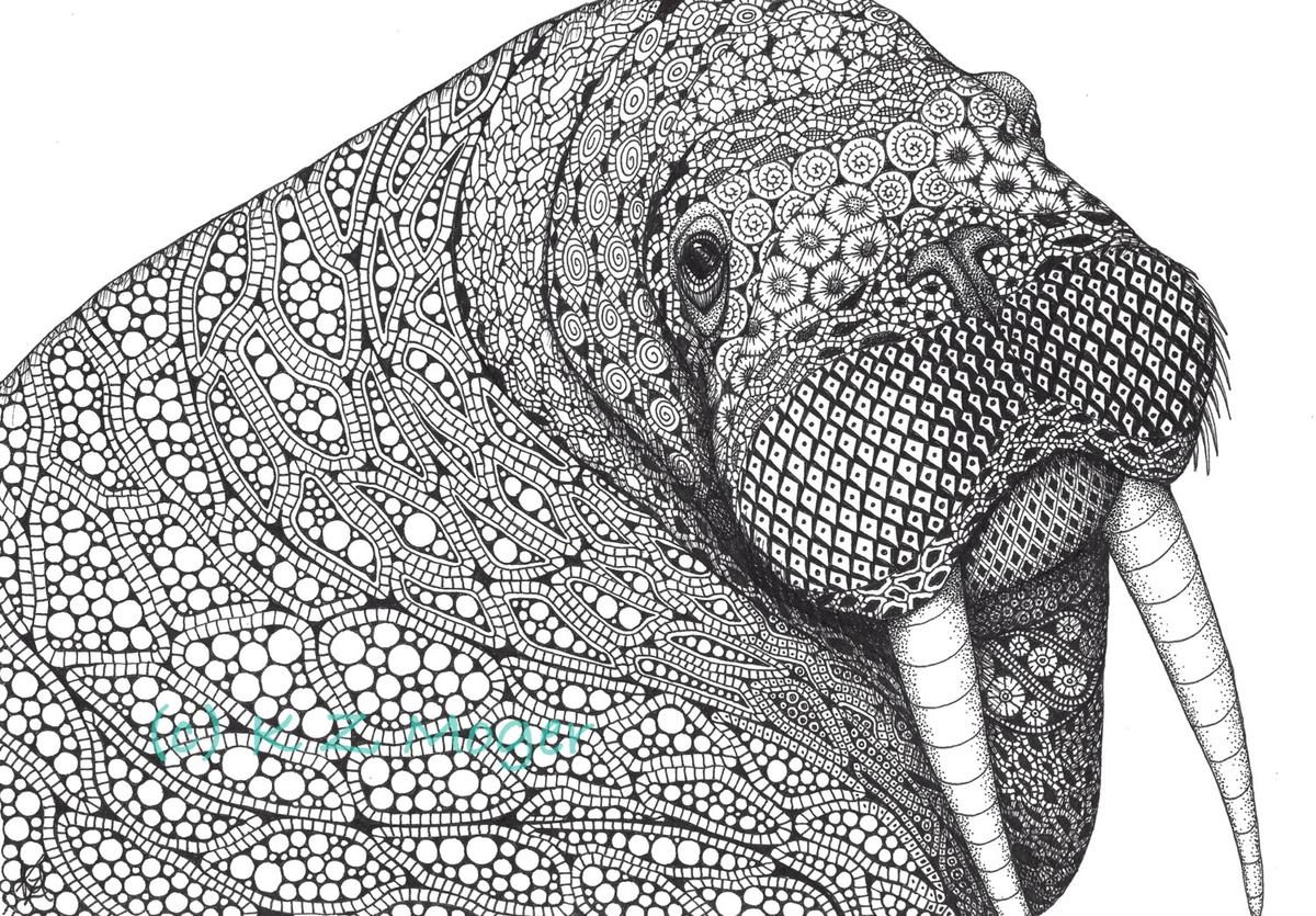 06-Curious-Walrus-Kristin-Moger-Domestic-and-Wild-Zentangle-Animal-Portraits-www-designstack-co