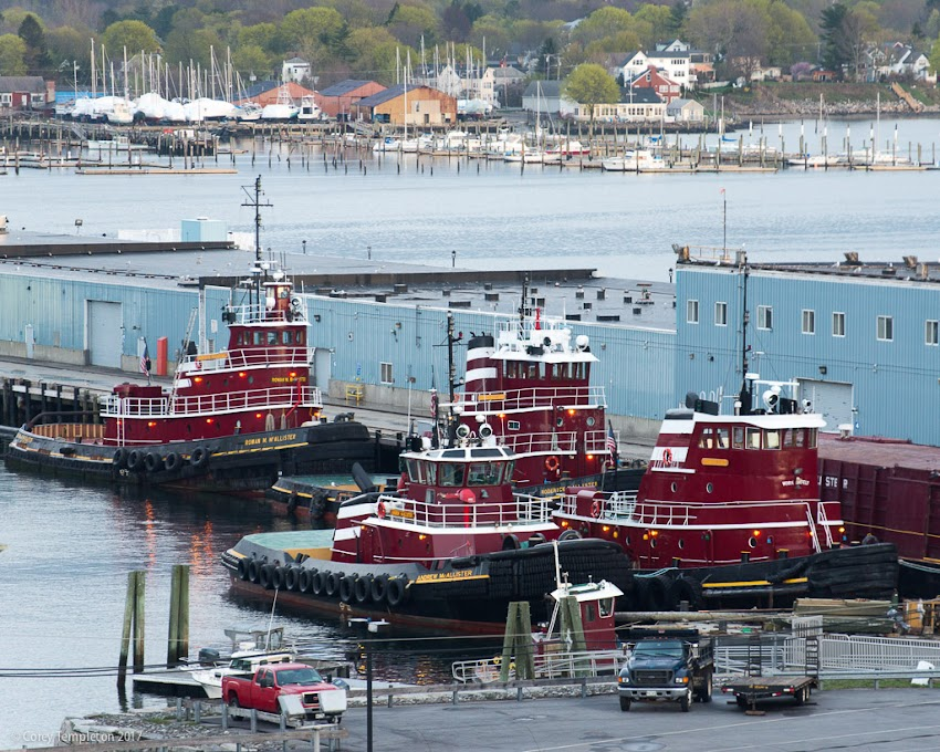Portland, Maine USA May 2017 photo by Corey Templeton. A flock of tugboats meeting at the State Pier along Casco Bay.