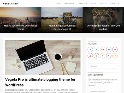 VegetaPro Premium Blogging WordPress Theme