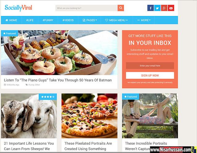SociallyViral Pro - Responsive Wordpress Premium Theme