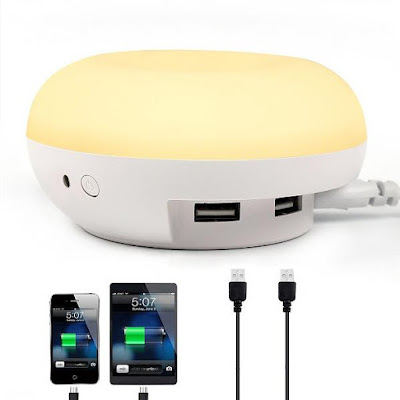 Smart 2 in 1 Night Light and Dual USB Wall Recharger Station