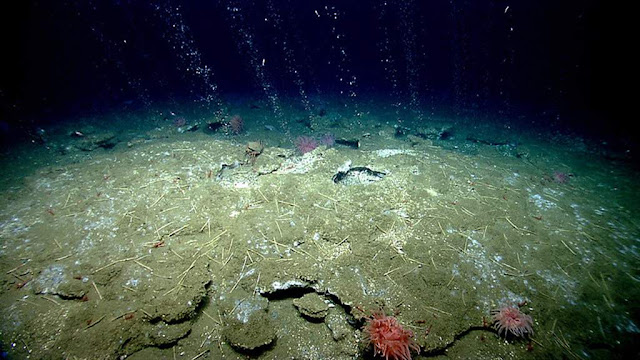 Earth's Mysterious Hum Recorded Underwater for 1st Time
