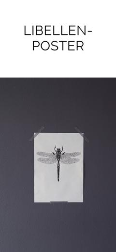 DIY: einfaches Libellen-Poster als Frühlingsdeko an der Wand   Tasteboykott