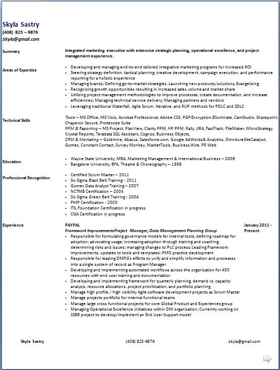 marketing program manager sle resume format in word